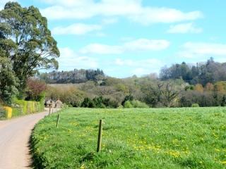 our-farm2